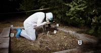 El extraño caso de la mujer cuyo ADN apareció en 40 escenas del crimen