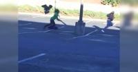 La furiosa respuesta de un ganso ante las burlas de unos peatones