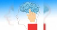 Tu cerebro funciona normalmente, hasta que te enamoras…