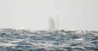 """Grabó barco """"fantasma"""" que se hundió hace más de 200 años"""