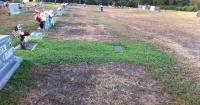 Esta pareja se preguntaba por qué el pasto de la tumba de su hijo estaba verde y se llevaron una sorpresa