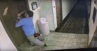 Perro con suerte: su correa quedó atrapada en el ascensor pero fue salvado a último momento