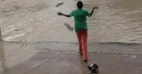 Valiente mujer espanta a cocodrilos con un chancletazo