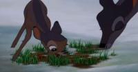 El secreto mejor guardado de Disney: liberan imágenes de la tráfica muerte de la mamá de Bambi