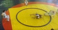 A esta niña le bastó un sólo golpe de yudo para derribar a su rival y el árbitro