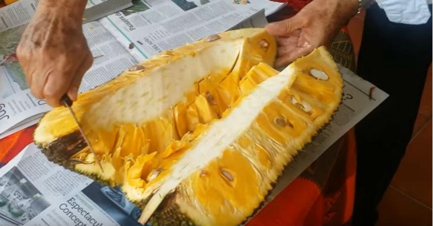 fruta-jaca