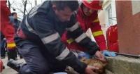 Bombero se convierte en héroe al salvarle la vida a un perro con respiración boca a boca