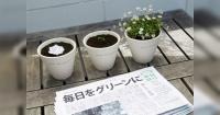 Este es el periódico que tiene la capacidad de convertirse en una planta tras ser leído