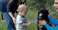El perro de la familia le ladraba a la niñera y dejó al descubierto una terrible verdad