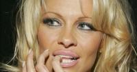 ¿Qué se hizo en la cara?: Pamela Anderson reaparece y luce totalmente irreconocible