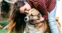 7 cosas que le haces a tu perro para demostrarle cariño pero que él odia