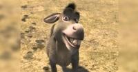 La peculiar teoría sobre el origen del Burro de Shrek que cambiará para siempre tu visión del personaje
