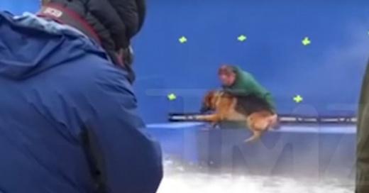 Filtran el video del maltrato a un perro mientras se rodaba una película que pronto se estrenará