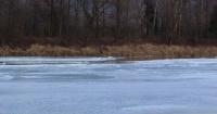 El misterioso círculo de hielo que se forma en este río tiene a todos intrigados