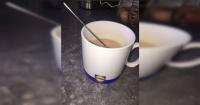 Pensó que era té y terminó bebiendo algo realmente asqueroso