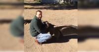 La verdad detrás del video donde un cóndor visita al hombre que le salvó la vida