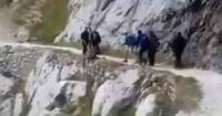 Indignación por turistas que lanzaron a un jabalí por un acantilado