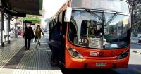 """Pasajera denunció insalubre """"plaga"""" en bus del Transantiago y es realmente asqueroso"""