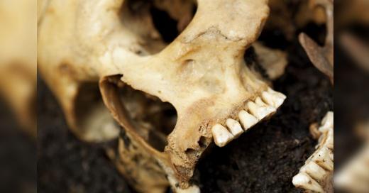 """""""Hoy nos vemos menos masculinos"""": reconstruyen la cara de un adolescente de hace 9.000 años y así se ve"""