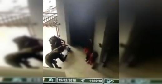 """La abrupta """"desaparición"""" de una niña mientras su madre la fotografiaba en un ascensor"""