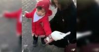 """Lo que hace esta niña con una paloma se hizo viral y a más de 500 mil personas """"le gusta"""""""