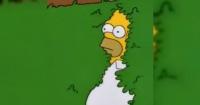 """Arquero homenajeó con su camiseta a """"Los Simpsons"""" y se volvió viral"""