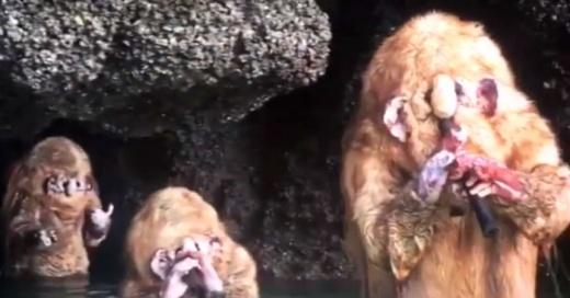 La verdad detrás de las extrañas criaturas que aparecieron en una cueva en Tailandia