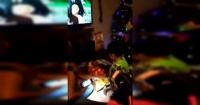 Niño no puede más de emoción al recibir una sandía como regalo de Navidad