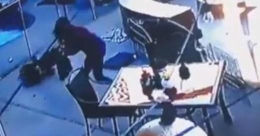 Halcón atacó a una perrita y su dueña luchó a golpes para salvarla