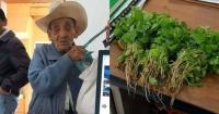 La conmovedora historia del anciano que pagó un acta de nacimiento con cilantro