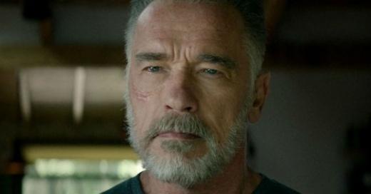 """""""Hollywood mete mujeres en todo"""": Arnold Schwarzenegger humilla a fan que se quiso pasar de listo"""